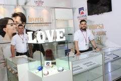 Expo Novia 2017