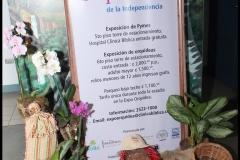 IV ExpoOrquideas 2016